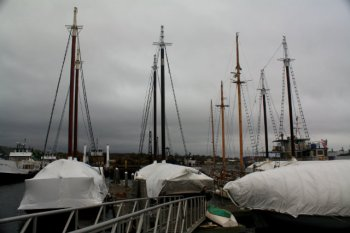 Lermond Cove is full of vessels ready to ride-out Hurricane Sandy